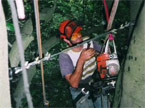 Man suspended many feet above the floor on a complex series of ropes, with a freshly installed brace keeping two trees equidista