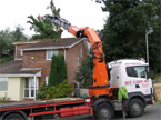 A large lorry with a big hiab manouvers into position ready to lift a large portion of dismantled tree over a rooftop