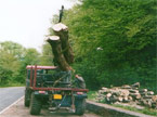 Large AC Matador vehicle picking up two huge tree stems using the attached crane