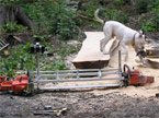 Half a tree trunk being processed, with the Planking Mill in the foreground, and a large American Bulldog mauling some gloves in