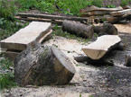 Two converted large planks, and half a tree trunk being processed