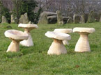 Five mushrooms arranged next to an aincient rock structure